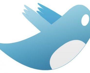 Twitter: Understanding Its Networking Value